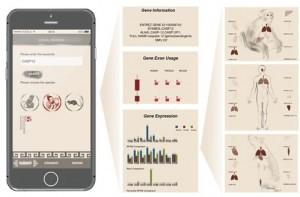 RhesusBase PopGateway的iPhone APP界面