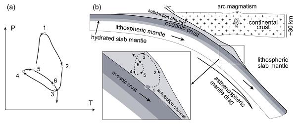 图4 榴辉岩在俯冲隧道内做多期俯冲-折返循环的示意图