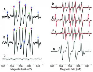 表征沸石分子筛内存在自由基的EPR 谱图