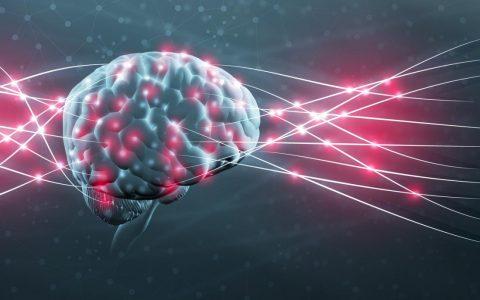 科学家发现影响记忆力的原因