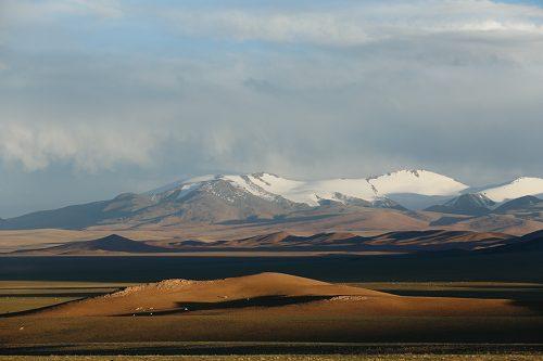 青藏高原塑造了东亚植被的多样性