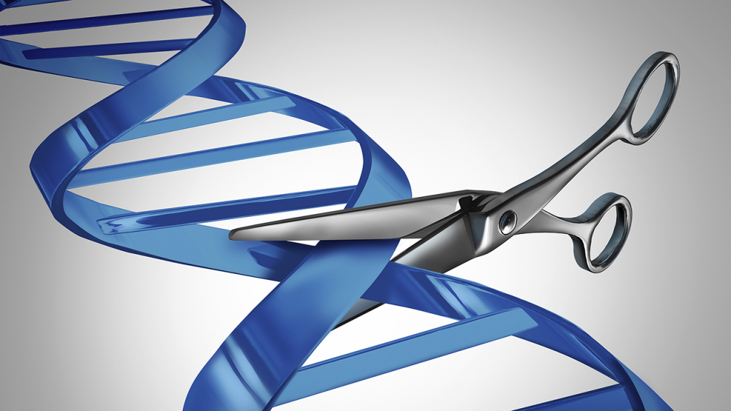 当CRISPR让你怀疑以前的实验结果可能有错